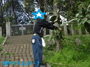DSC00571_20140501231208eb8.jpg