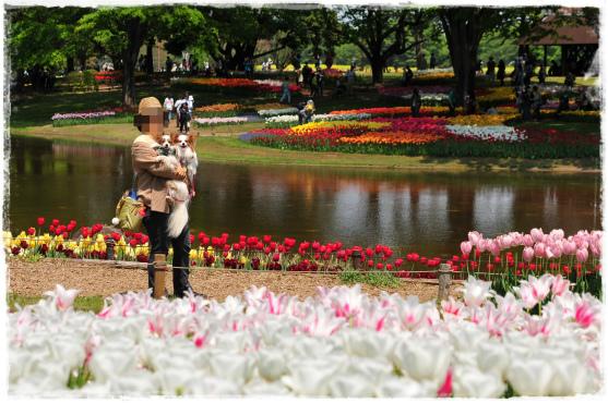 昭和記念公園⑪