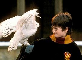 ハリー・ポッターと賢者の石2