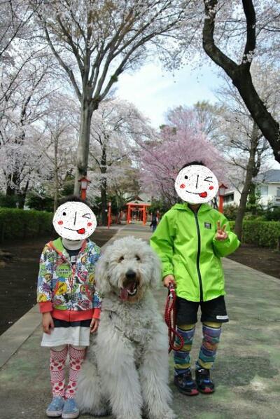fc2_2014-04-02_19-45-39-819.jpg