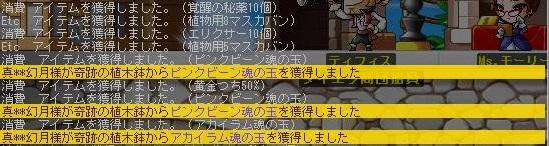 Maple140706_103816.jpg