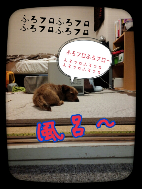fc2_2014-02-21_18-56-35-244.jpg