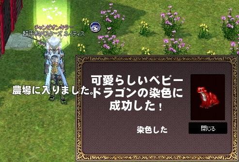 mabinogi_2014_03_11_005.jpg