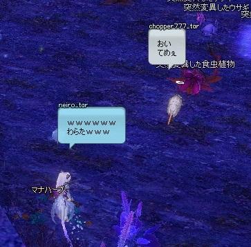 mabinogi_2014_06_02_001.jpg