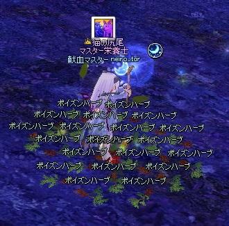 mabinogi_2014_06_04_002.jpg