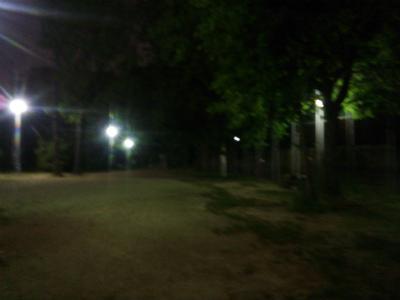 DSC_5714.jpg