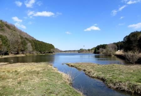 2014_03 22_五桂池近くの湿原