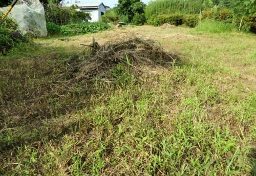 2014_07 27_草刈り後の下畑