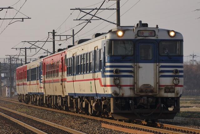 DSC09511 - コピー