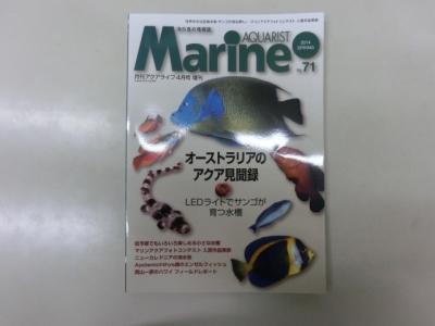 海水魚 037