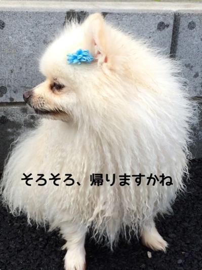 fc2blog_20140718204756b27.jpg