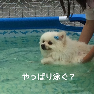 fc2blog_2014072019464098b.jpg