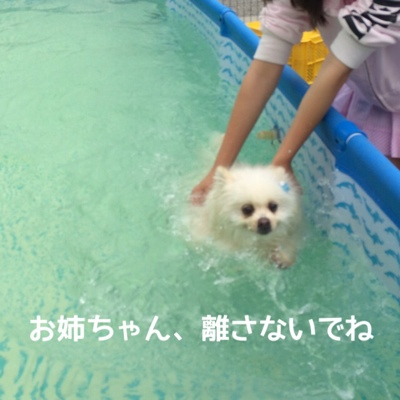 fc2blog_20140720194739550.jpg