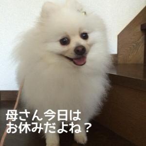 fc2blog_20140808095505c34.jpg