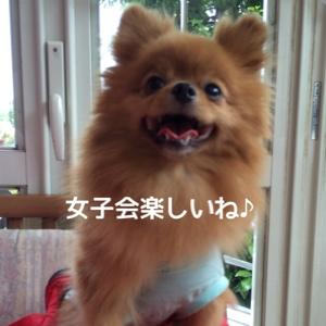 fc2blog_2014081120451468e.jpg