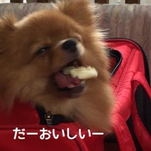 fc2blog_2014081318535300d.jpg