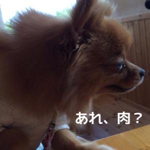 fc2blog_2014082315581020e.jpg