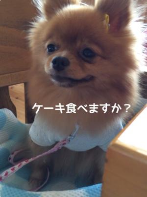 fc2blog_20140826200308e64.jpg