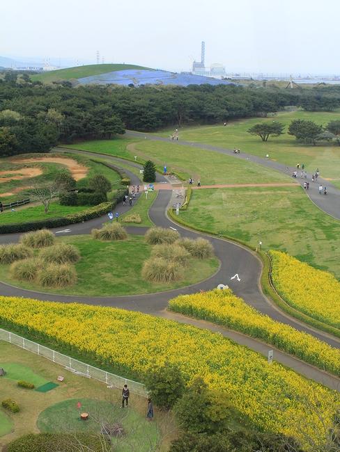 ひたち海浜公園の観覧車からの景色
