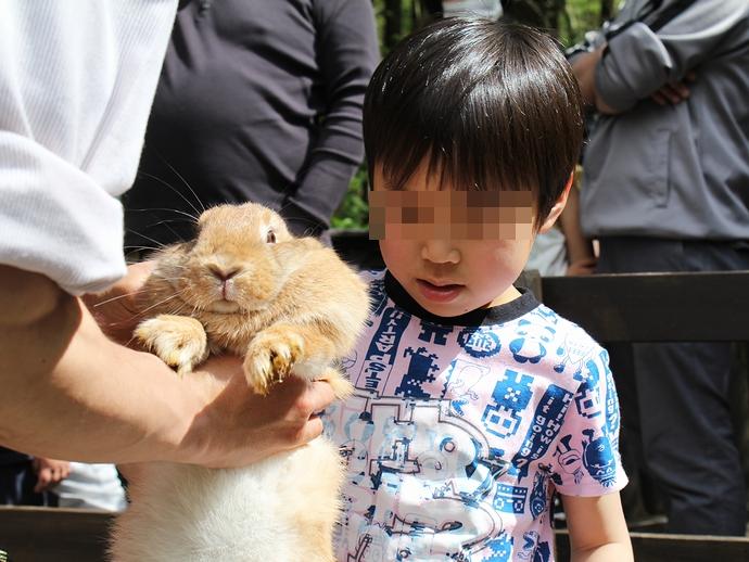 ウサギと戯れる(富士サファリパーク)