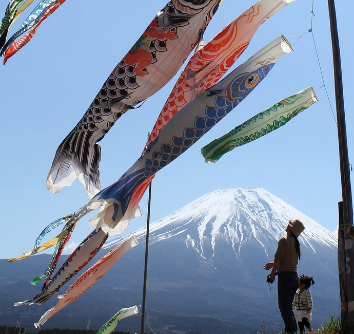 朝霧高原の鯉のぼりと富士山