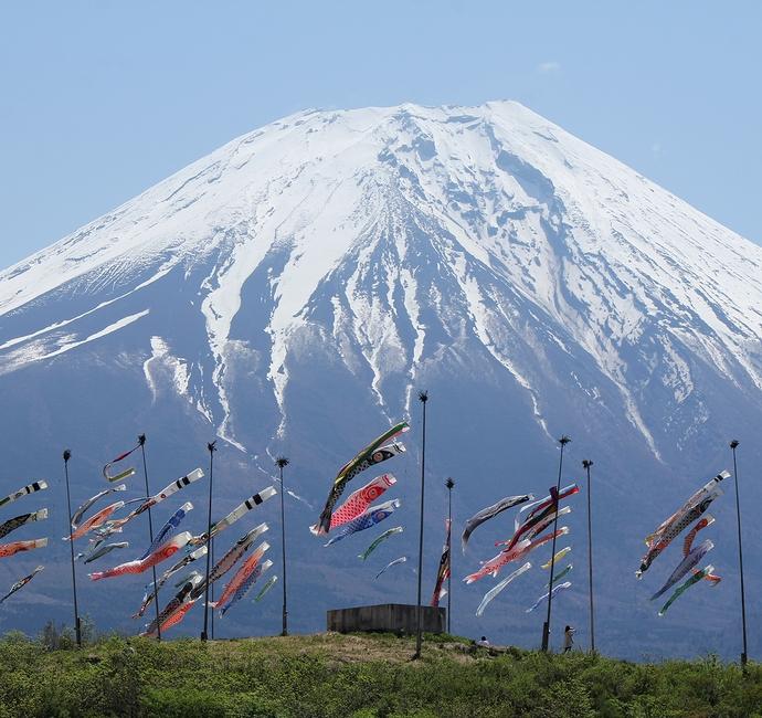 朝霧高原のシャッタースポット 富士と鯉のぼり