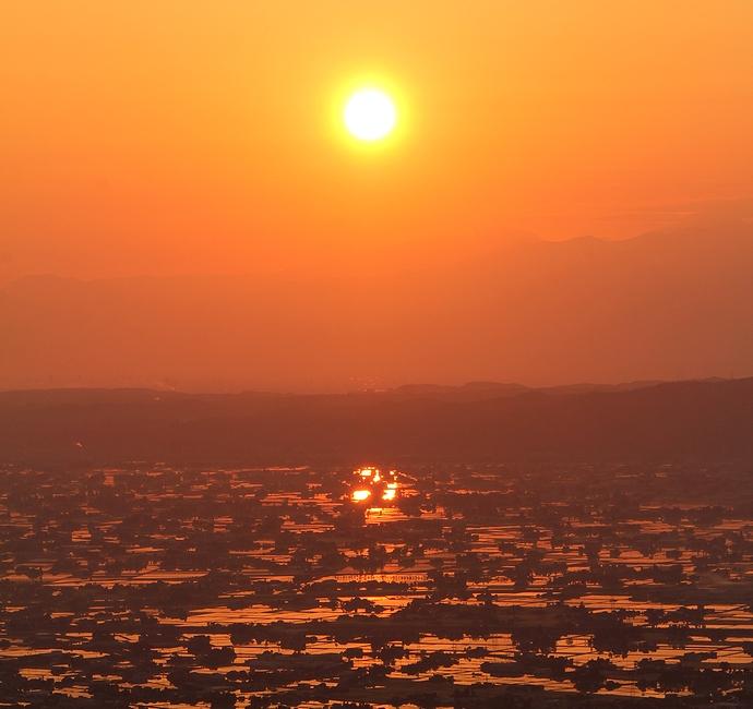 朝日に輝く砺波平野の水田
