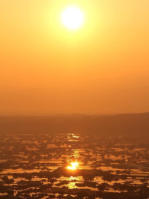 朝日と黄金色に輝く水田(砺波平野 医王山国見平より)