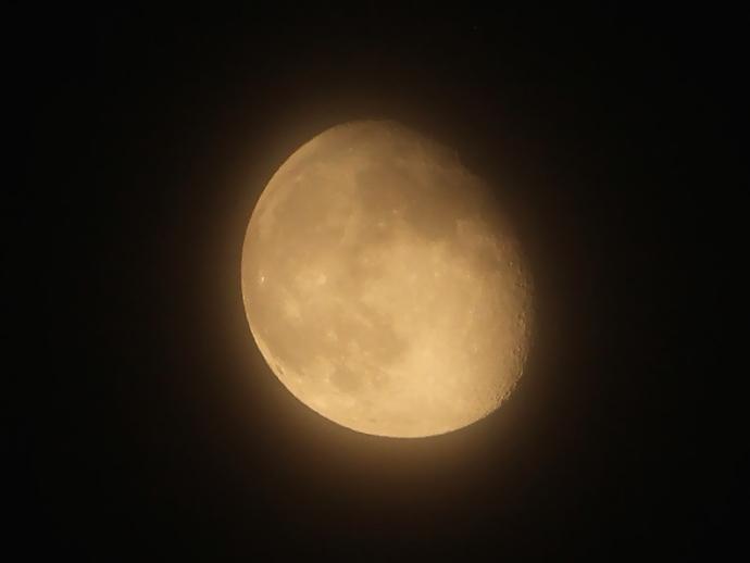 蛍の夜の朧月