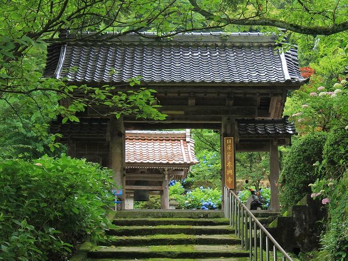 金沢市のあじさい寺・本興寺の山門