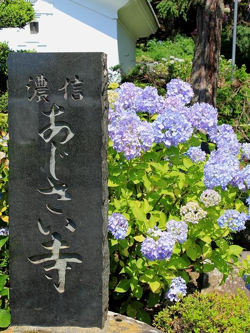 信濃のあじさい寺の碑(松本市弘長寺にて)