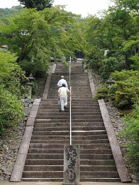 三室戸寺 本堂へ続く石段