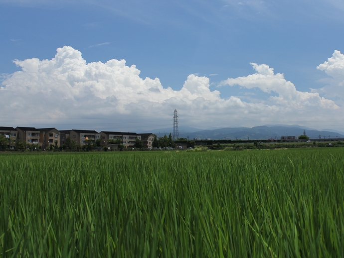 真夏の空 入道雲が湧く(金沢市)