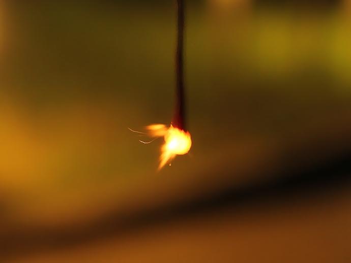 線香花火の第一段階 「牡丹」