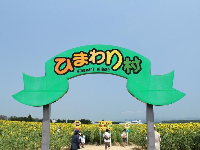 津幡町ひまわり村の様子