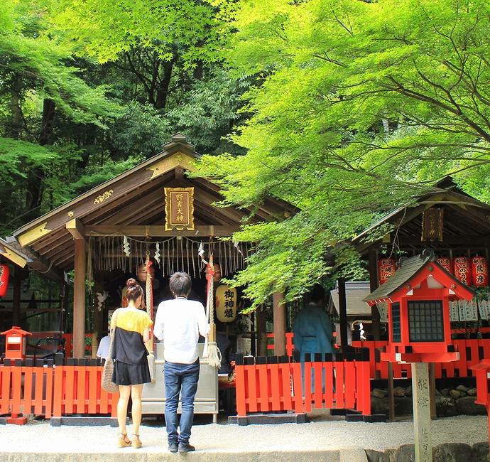 野宮神社を参るカップル(京都・嵐山)