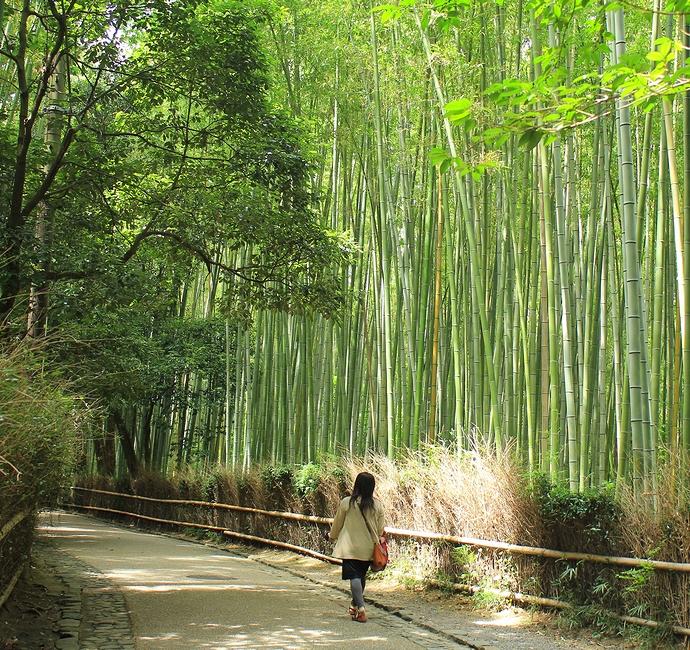 竹林の小径を歩く女性 京都嵐山にて