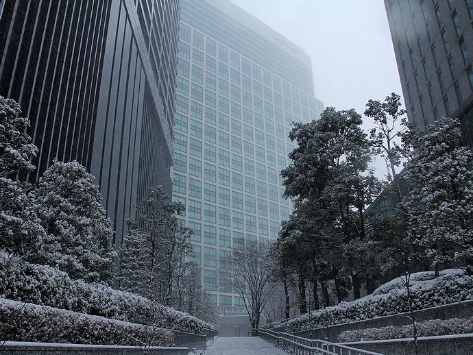 汐留高層ビル街の雪景色
