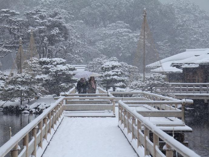 浜離宮恩賜庭園 雪景色と雪吊りと