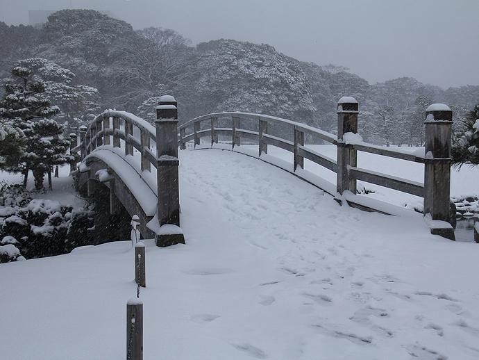 雪の浜離宮恩賜庭園