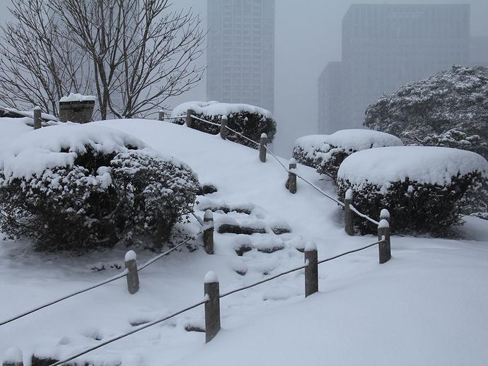 雪の浜離宮恩賜庭園 御亭山の様子