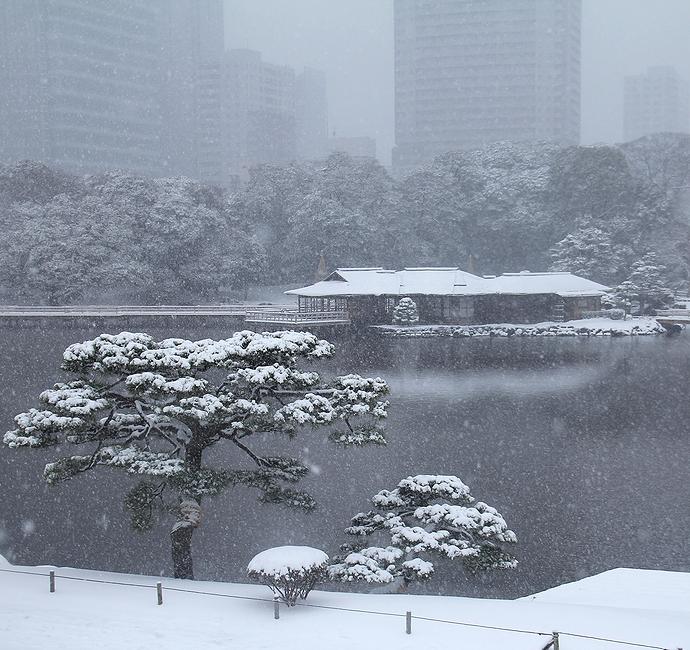 浜離宮恩賜庭園 水墨画の世界 2014東京大雪