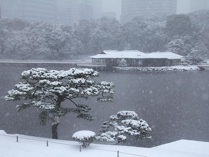 2014東京大雪 浜離宮恩賜庭園の雪景色