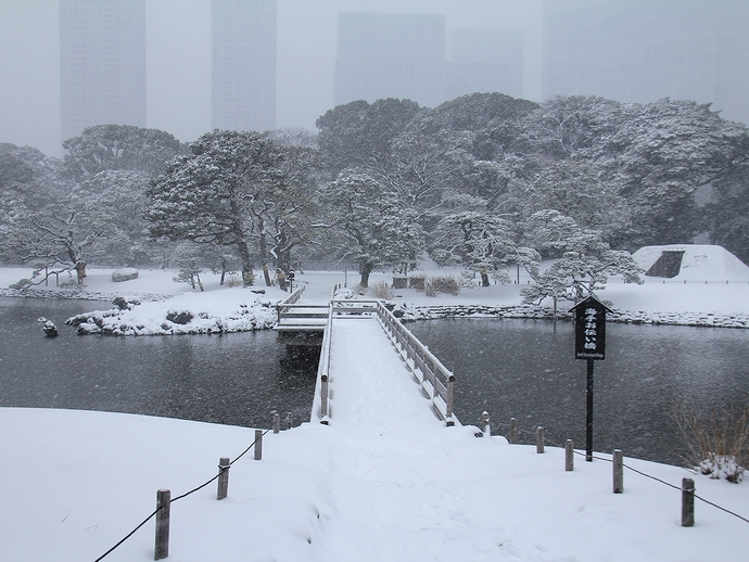 雪の浜離宮恩賜庭園 海手お伝い橋の様子