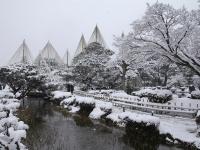 兼六園 弥生の雪景色
