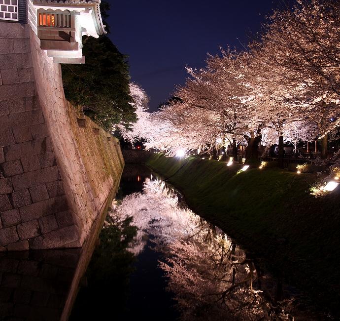 金沢城のお堀に映る桜 観桜期ライトアップ