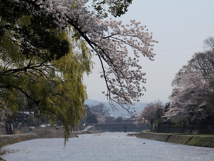 天神橋から眺めた浅野川上流方向