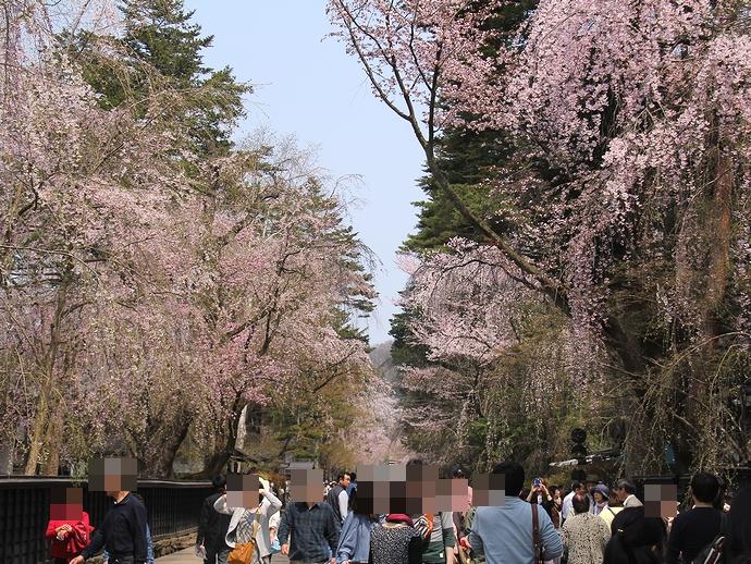 賑わう桜の時期の角館