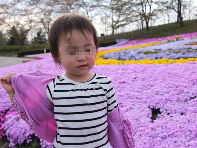 芝桜の花壇にて おでこにダンコブ