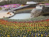 その3 花がいっぱい!みちのく杜の湖畔公園